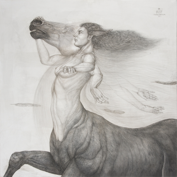 The last CENTAUR・♀ 91,5×91,5cm Silver pencil, Pencil