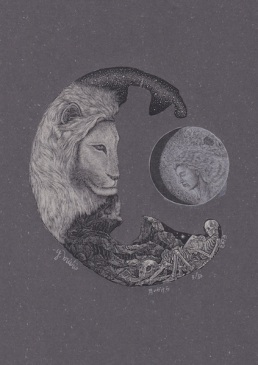 A piece of moon _2013