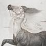 The_last_centaur_915x915_2011_tn